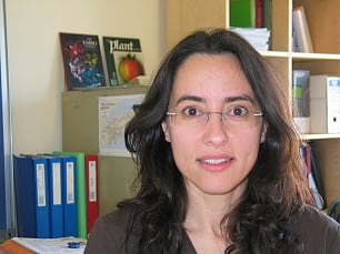 PhD L. Maria Lois, Center for Research in Agricultural Genomics CRAG (CSIC-IRTA-UAB), Barcelona