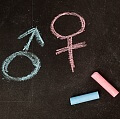 Male and female gender symbols in pink and blue on a blackboard